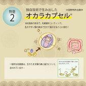 ライラック乳酸菌入り北海道産玉ねぎ&ごぼうスープ(5食分)