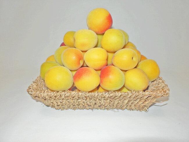 フルーツ・果物, 梅 2 67 2L-10Kg