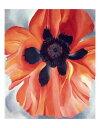 【アートポスター】Red Poppy, No. VI, 1928(281×358mm) -オキーフ-