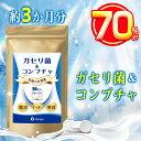 ★スーパーセール限定・実質価格1950円★ ガセリ菌 乳酸菌...