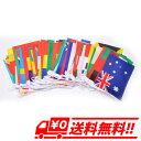 長さ25m 運動会 フェスティバル 国際交流 装飾 万国旗