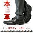 本革ビジネスシューズ ローファー 革靴 紳士靴 幅広 ワイド テクシーリュクス texcy luxe【P4Z】【メンズ】
