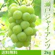ぶどう 瀬戸ジャイアンツ(2kg)ギフト【送料無料】