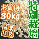 「特別栽培」で育てた安心・安全なお米です。玄米(30kg)白米 兵庫県産コシヒカリ 特別栽培米有機肥料【同梱不可】【楽ギフ_のし】【RCPsuper1206】【0603superP5】