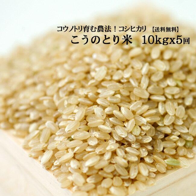 【新米】【定期購入】 お米10kg×5回 玄米 白米 コウノトリ米 令和2年産【当日精米】【送料無料】
