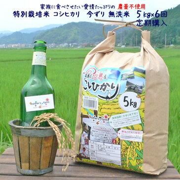 【新米】【定期購入】5kgx6回 平成30年産 玄米 白米 今ずり米 無洗米 農薬不使用 コシヒカリ