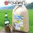 玄米 白米 今ずり米 無洗米 コシヒカリ 兵庫県 但馬産【10kg】