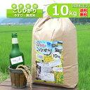 【新米】【定期購入】10kgx6回 令和元年産 玄米 白米 今ずり米 無洗米 減農薬・特別栽培米 コシヒカリ