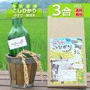 【新米】令和元年産 無洗米 コシヒカリ お試し 玄米 白米 今ずり米 ポイント消化【3合】【送料無料】