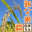 コシヒカリ 白米 親父米 兵庫県産 お米 5合【送料無料】