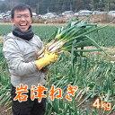 【予約】岩津ねぎ 産地直送 朝来特産 訳あり 4kg【送料無料】