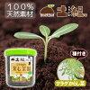 こうのとり育む菜園(サラダからし菜)