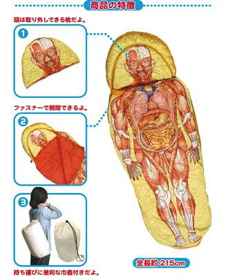 【バラエティー雑貨・寝袋・クリスマスギフト】【送料無料】人体模型寝袋【15Jun12P】【18Jun12P】