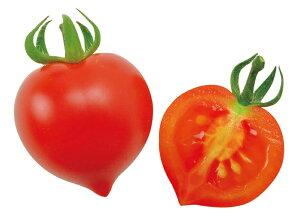 サンクスハートマトハートの実がなるハートマト栽培セット観葉植物ガーデニング栽培キット聖新陶芸ギフトプレゼント