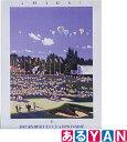アートポスター 「Ryder Cup」 ヒロ ヤマガタ HIRO YAMAGATA 送料無料