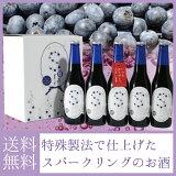 岩手の酒蔵あさ開(あさびらき)蔵出しブルーベリースパークリングSorae320ml