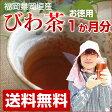 びわの葉茶 1か月分 30袋入 無農薬 びわ茶 福岡県産 【送料無料】