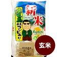 28年産新米 鹿児島コシヒカリ 玄米 5kg 新米こしひかり コメ/米/こめ/新米