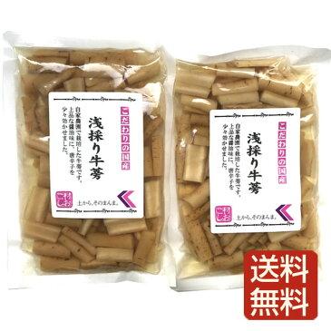 浅採りごぼう 漬け物 2袋入 鹿児島産 ゆうパケット限定で送料無料