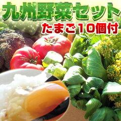 【送料無料】【あす楽】野菜セット たまご 10個付 九州 西日本 野菜 野菜セット【よかもん物…
