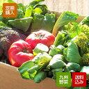 【送料無料】野菜セット 水もしたたる 九州 野菜 12品以上!【定期購入】