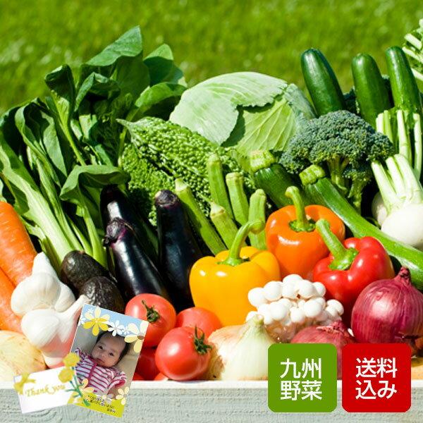野菜ギフト 10品 九州野菜 野菜詰め合わせ 九州 西日本 野菜 お歳暮 ギフト 送料無料