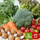 送料無料野菜セットたまご10個付旬の九州野菜12品以上とたまごを詰め合わせた野菜セット
