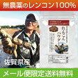 れんこんパウダー 無農薬 100g 無農薬のレンコンで作った蓮根パウダー 純度100% 粉末野菜 蓮根粉