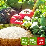 野菜とお米のセット 野菜詰め合わせ 野菜詰め合わせ 九州野菜 お取り寄せ グルメ ギフト