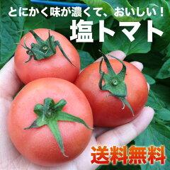 トマト嫌いでも食べられる!熊本県八代産の塩トマトナチュラルボックスにお入れしてお届け!大...