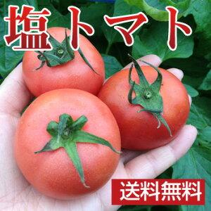 特別栽培の塩トマトでご贈答にもオススメ!ナチュラルボックスにお入れしてお届けします。【送...