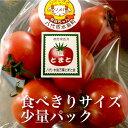 塩トマト(食べきりサイズ) 熊本県八代産テレビや雑誌で紹介された松村さんちの塩トマト - 朝ごはん本舗