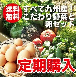 【定期購入】【送料無料】野菜セット たまご10個付きご希望の日にお届けします! 【送料無料_s…