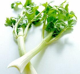 食物繊維が豊富で栄養満点! セロリ (福岡産)