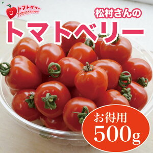 トマトベリー は、トマト嫌いでも食べられると大評判! 熊本県八代産 松村さんちのトマトベリ...