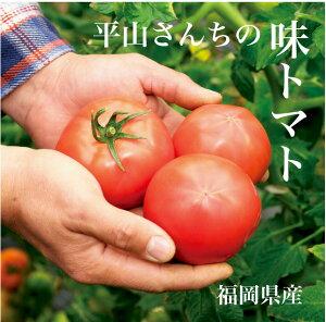 おしゃれイズムで放映!トマト嫌いでも食べられる!福岡県産のトマト【トマトジュース】【おし...