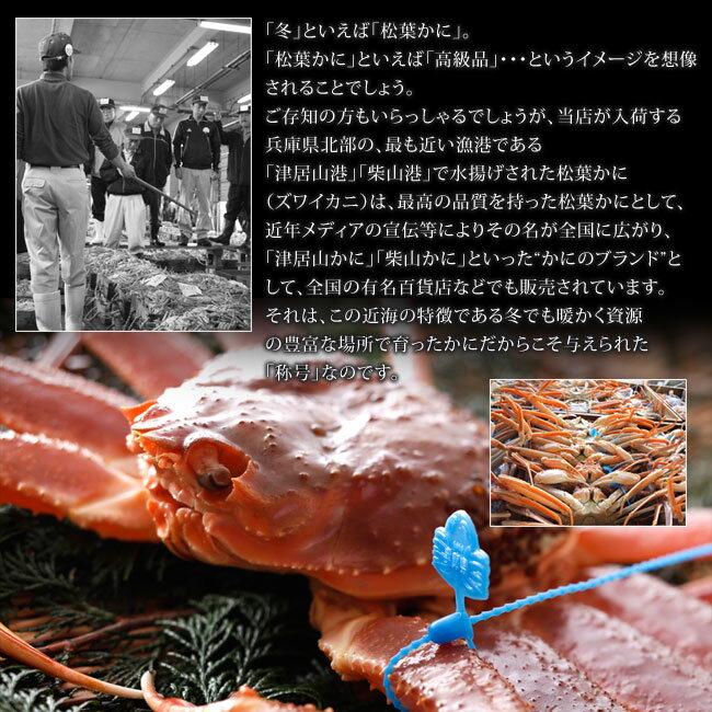 【!】訳あり釜茹でセコガニ1kg前後(6~8杯)せこがに 香箱ガニ セイコガニ カニ かに ズワイガニ かにみそ 松葉ガニ せこ蟹 セコガニ こっぺがに コッペガニ 通販かに お取り寄せ蟹