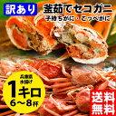 【送料無料!】訳あり釜茹でセコガニ1kg前後(6〜8杯)【配