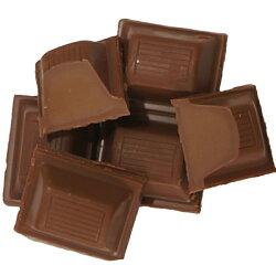 フェアトレードウインターチョコレート100g【オーガニック有機栽培】【添加物不使用】【冬季限定】【メール便対応不可】