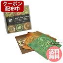 マラソン限定クーポン配布 クロップサークルカード 全108枚 コルテPHIエッセンス その他