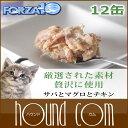 Forza0066set_sum