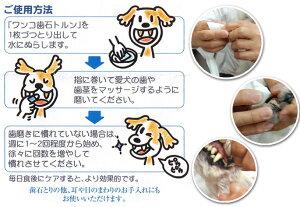 ワンコ歯石トルン【歯石歯垢歯磨きデンタル】