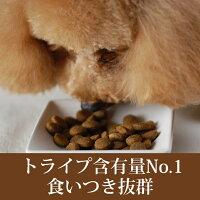 トライプドライ犬ドライフード【バイソン】907g食いつき抜群生きた栄養素たっぷりのドッグフード消化に優れたプレミアムドライフード穀物不使用ドライフードグレインフリー。シリーズでトライプの含有量がNO.1