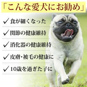 老犬健康ケア3点セット