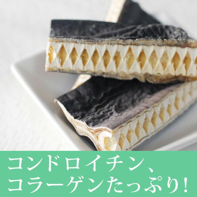帝塚山ハウンドカム『ヨシキリ鮫コラーゲンガムショート』
