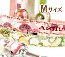 ASHU SOAP leads M size 5P13oct13_b
