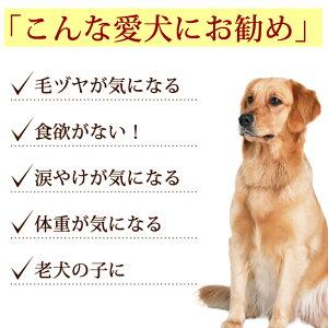 犬馬肉/生馬肉1kg