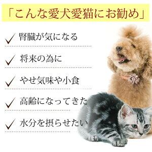 犬用猫用生肉|腎ケアプラスネック骨ごとミンチ