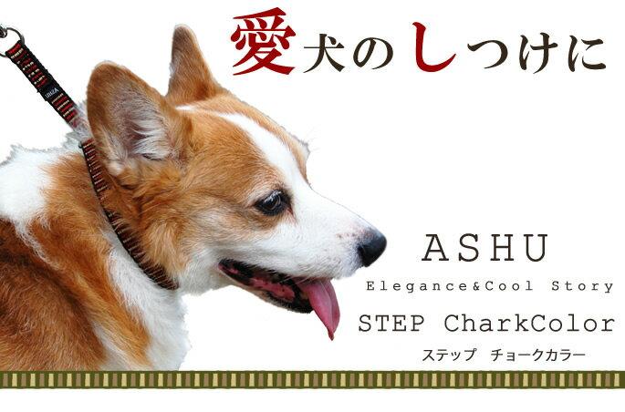 ASHU『ステップカラーMサイズ』