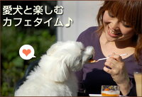 犬用ケーキ/ドッグプチプチカップケーキセット/犬誕生日ケーキバースディケーキ/プレゼントギフト/小型犬5P13oct13_b【RCP】